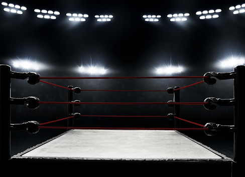 istock Professional boxing ring 1005886868