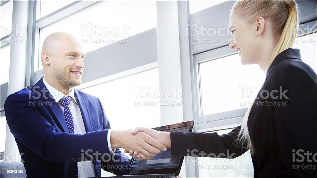 Professional Business Handshake royalty-free stock photo