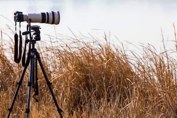 professionele camera met telelens op een statief - telelens stockfoto's en -beelden