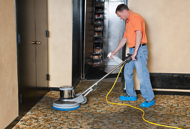 Royalty Free Carpet Cleaner Pictures Images And Stock