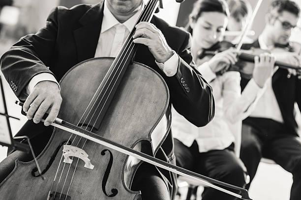 professional cello player - philharmonie stock-fotos und bilder
