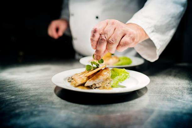 professional chef w: work - atmosfera wydarzenia zdjęcia i obrazy z banku zdjęć