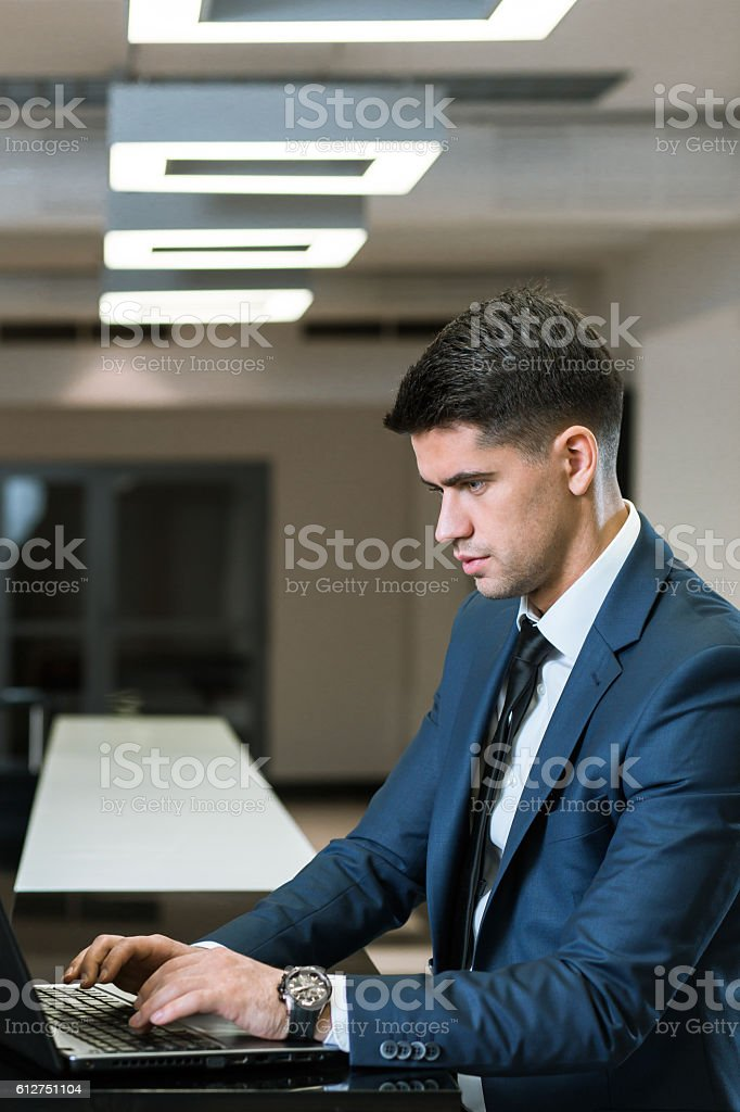 Professional consultant working in the office stock photo
