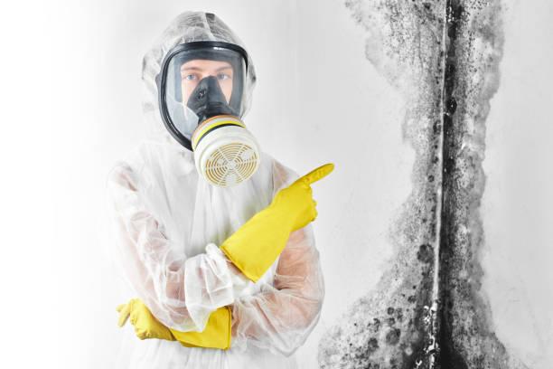 Ein professionelles Desinfektionsgerät in Overalls und eine Maske zeigen einen Finger auf die schwarze Form an der Wand. Entfernung des Pilzes in Wohnung und Haus. Aspergillus.