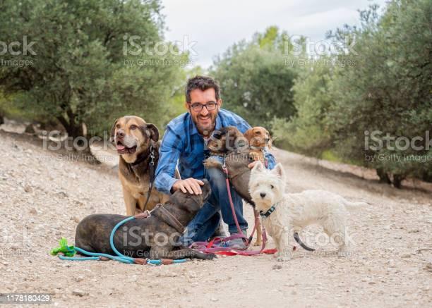 Professional dog walker or pet sitter with a pack of cute different picture id1178180429?b=1&k=6&m=1178180429&s=612x612&h=pwvxroc2vs6x8vddej5iqkatmrh8qm57lk8vpamtavs=