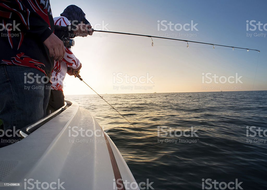 Professional fishing royalty-free stock photo