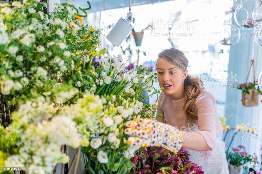 Professional florist working in flower shop. Florist shop in...