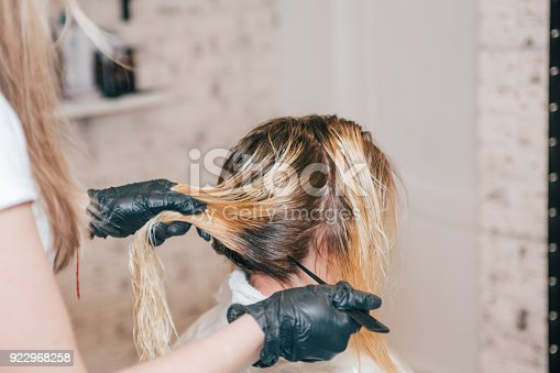 istock Professional hairdresser dyeing client's hair. 922968258