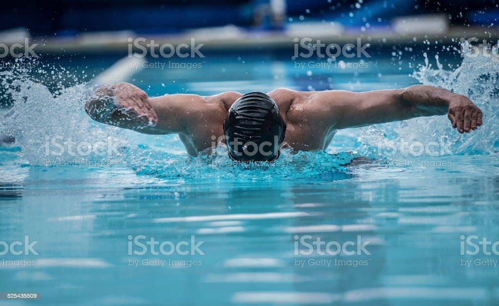 Professional male swimmer stock photo