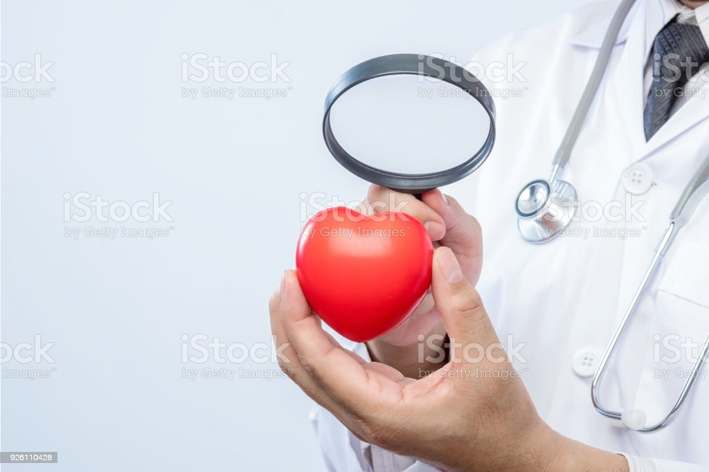 Professional medical doctor holding a magnifying glass check up on a red heart ball. Concept of health care. stock photo