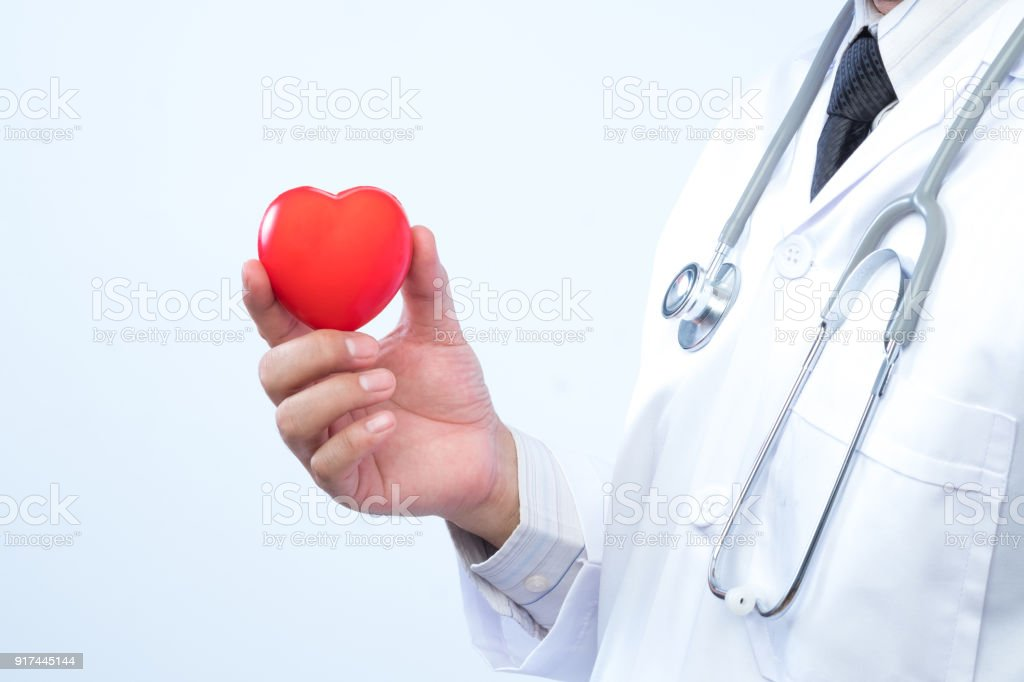 Professional medical doctor holding a red heart ball in the hospital background. Concept of health care. stock photo