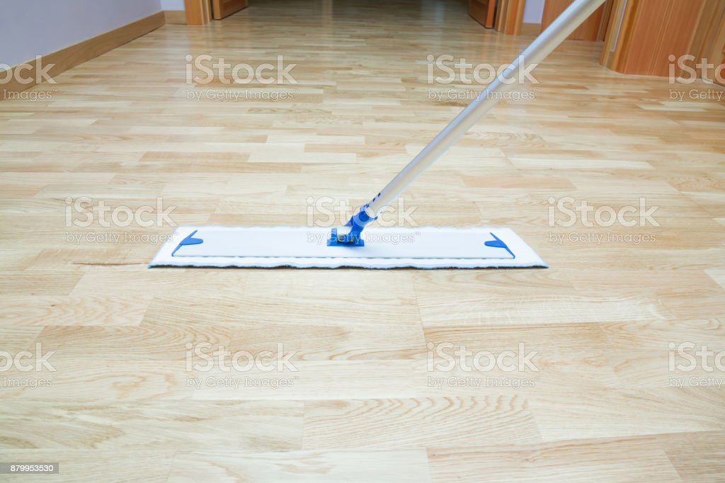 Professional Mop On The Wooden Floor In Room Regular Clean Up Commercial Cleaning