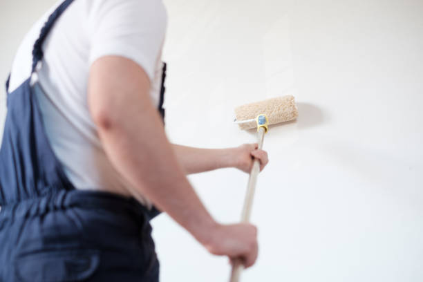 professional painter worker is painting one wall - peintre photos et images de collection