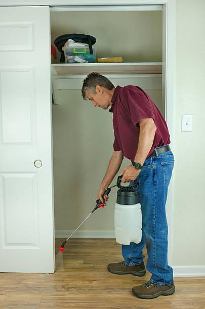 Professional pest control home bug service stock photo