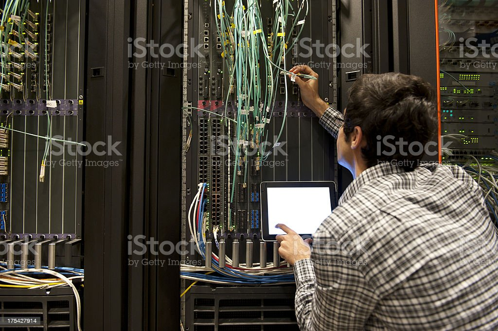 IT Professional royalty-free stock photo
