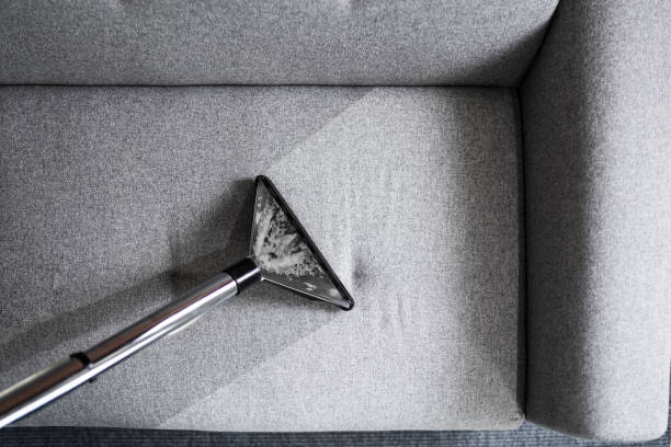 Professional Sofa Cleaning Service stock photo