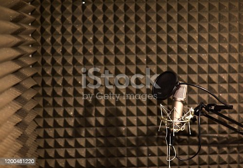 istock Professional studio microphone for voice recording. Sound recording studio. Soundproof room 1200481220