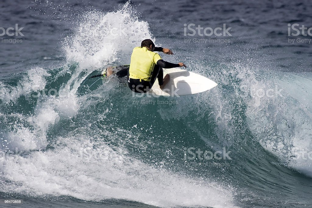 Professional Surfer royalty-free stock photo