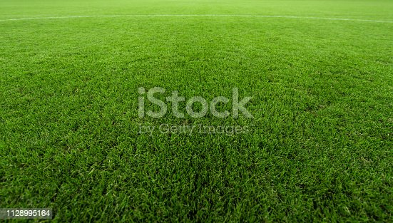 508552962 istock photo Professional turf, stands and lighting for evening outdoor football fields 1128995164