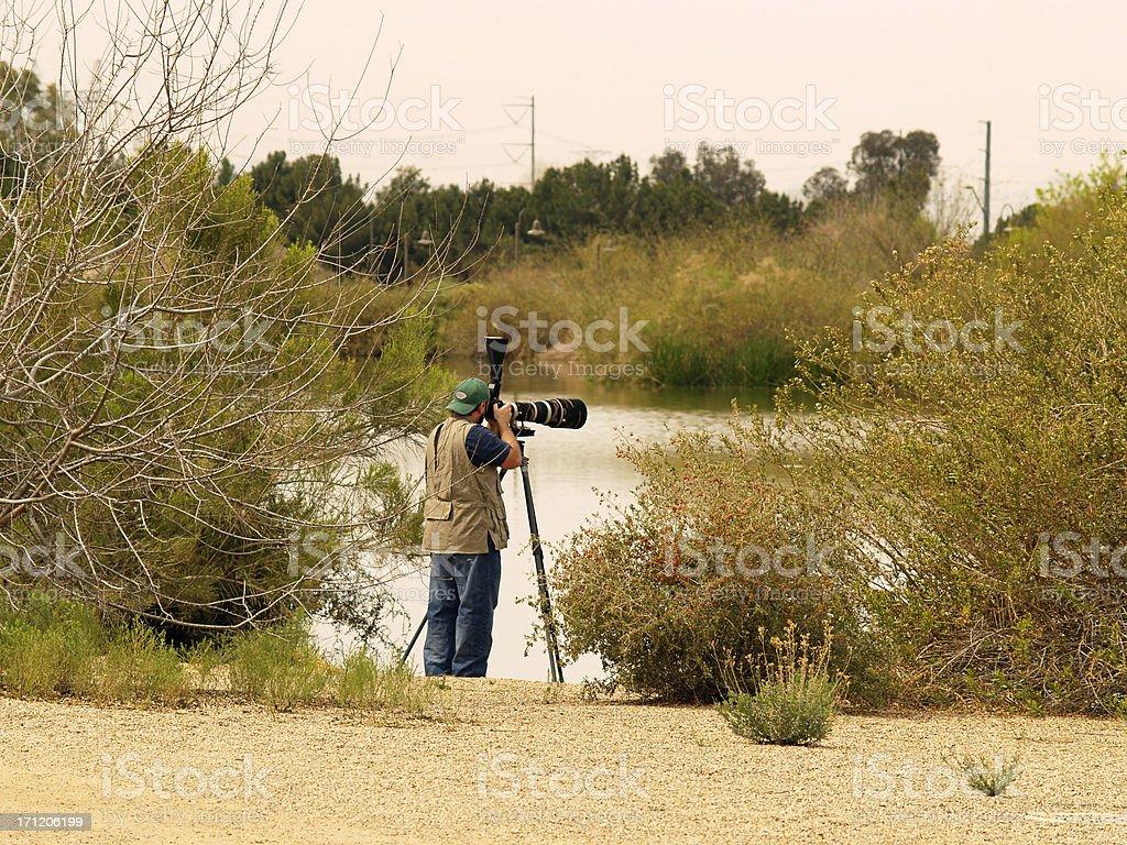 Professional Wildlife Photographer stock photo