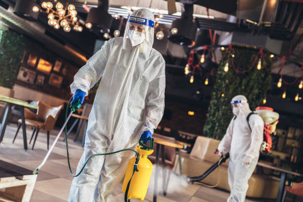 Professional workers in hazmat suits disinfecting indoor of cafe or restaurant, pandemic health risk, coronavirus stock photo