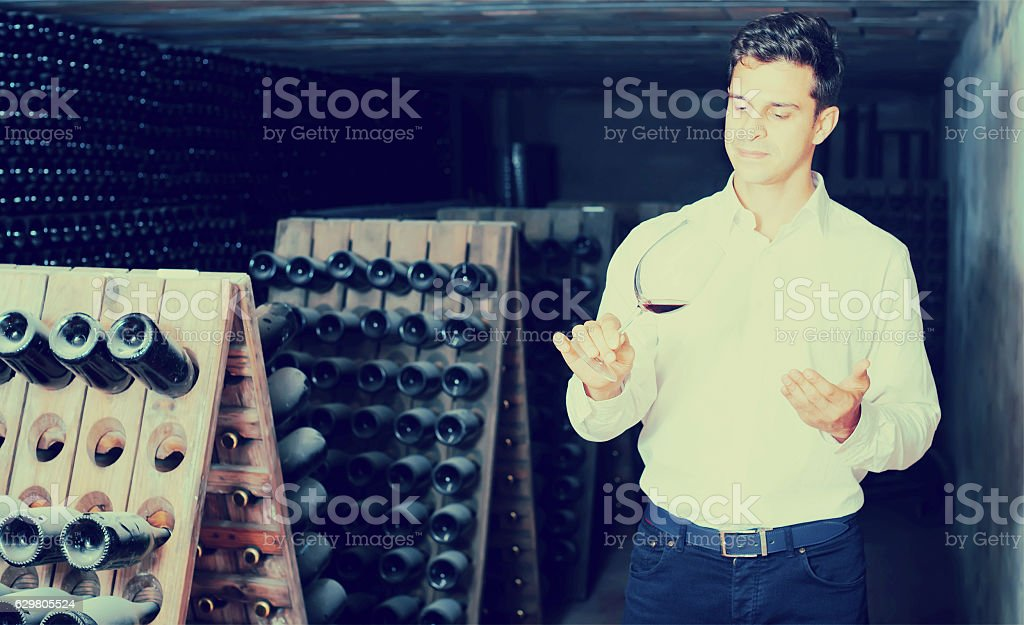 Proficient young man holding glass of wine in cellar stock photo