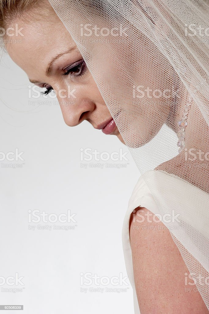 Profile of a Bride wearing a veil royalty-free stock photo