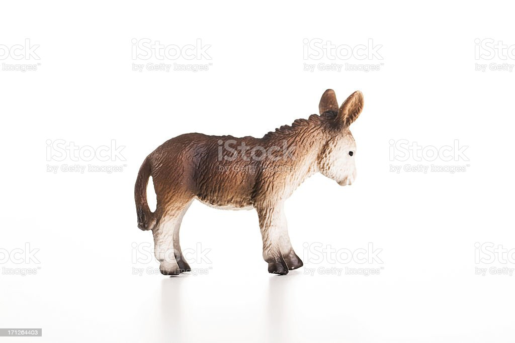 profile of a donkey royalty-free stock photo