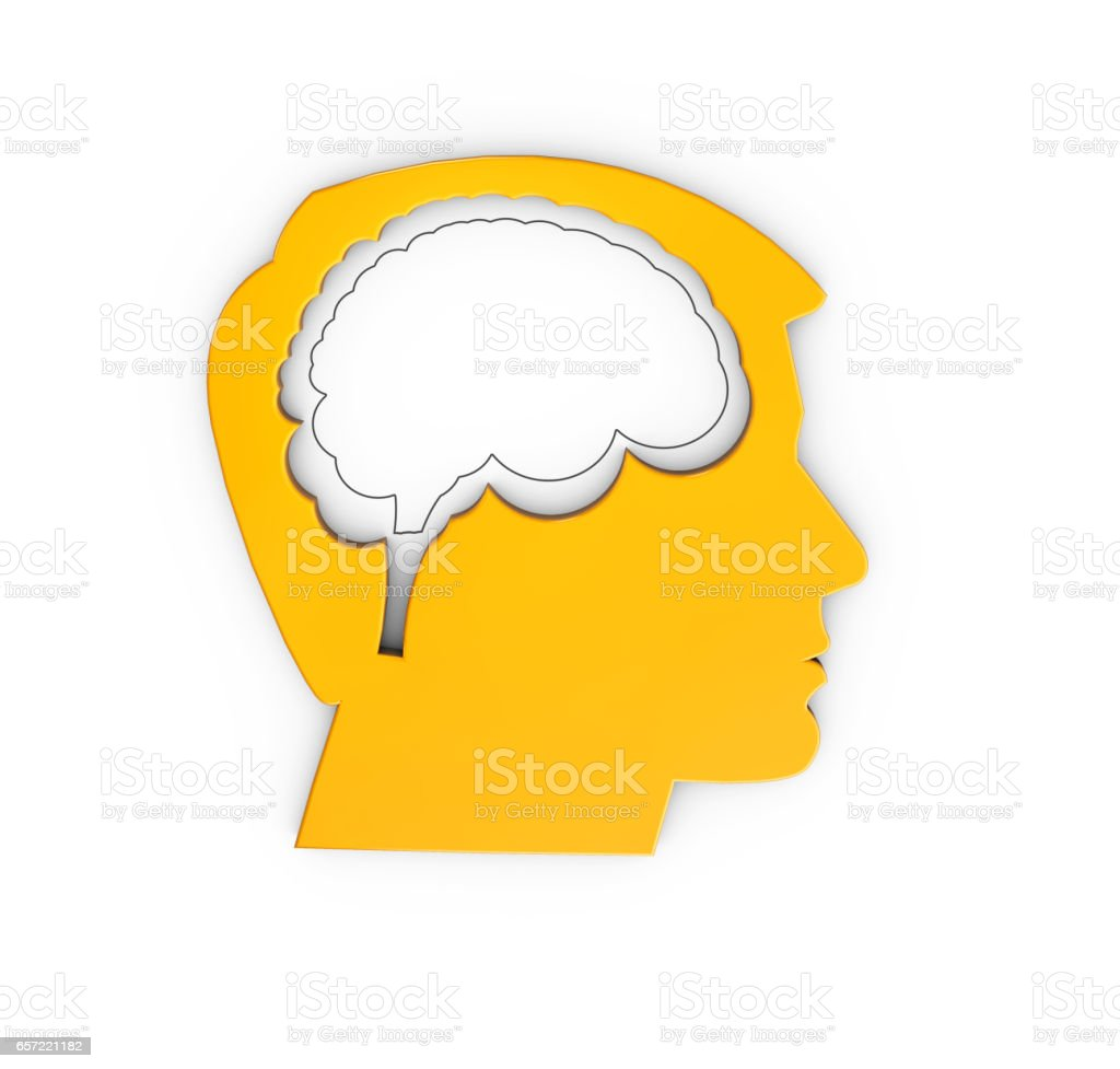 Profile of a human head with brain, 3d Illustration isolated White stock photo