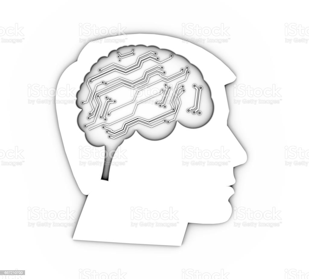 Profile of a human head with brain, 3d Illustration stock photo