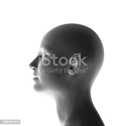 profile of a woman isolated, 3-d render