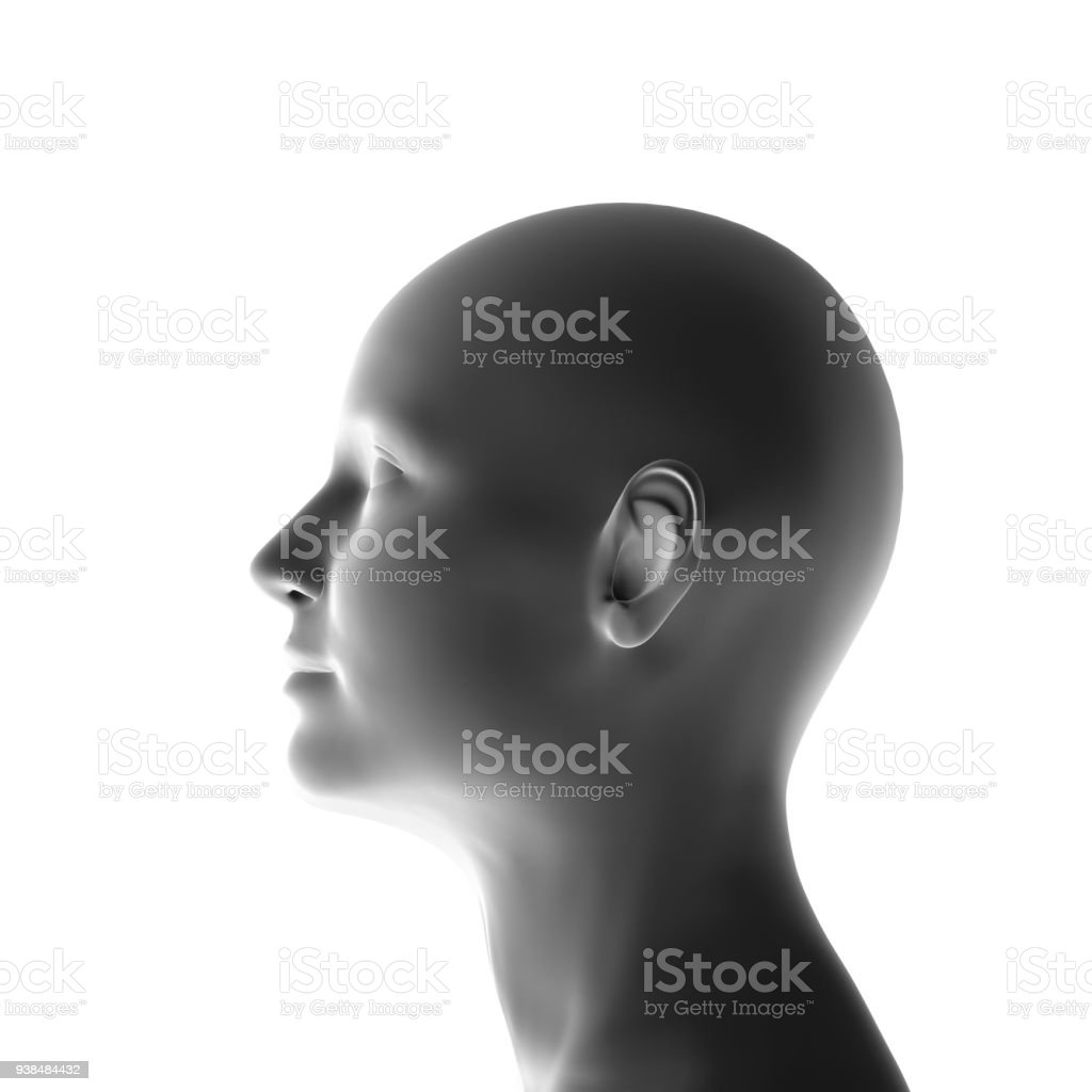 profile of a woman isolated, 3-d render stock photo