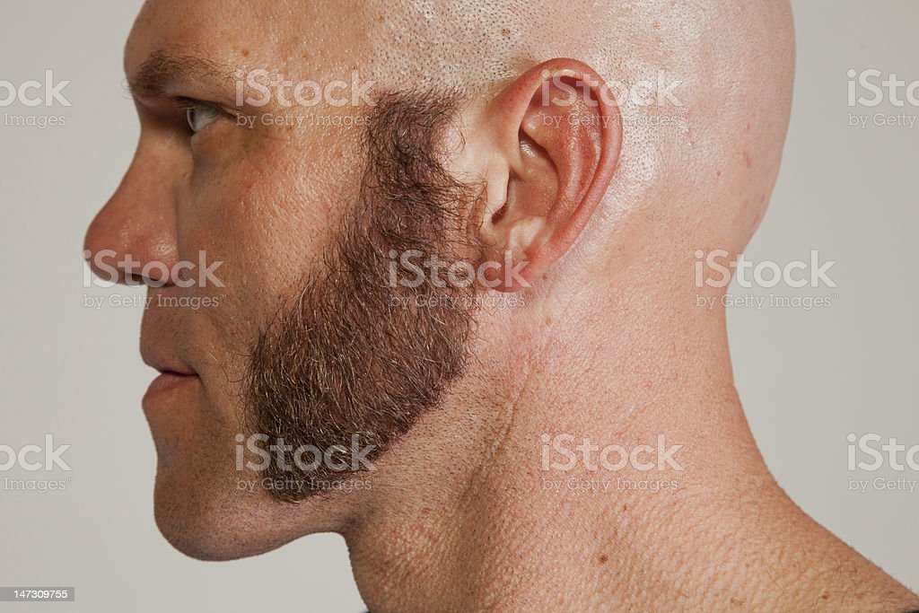Profile of Man with Thick Mutton Chops stock photo