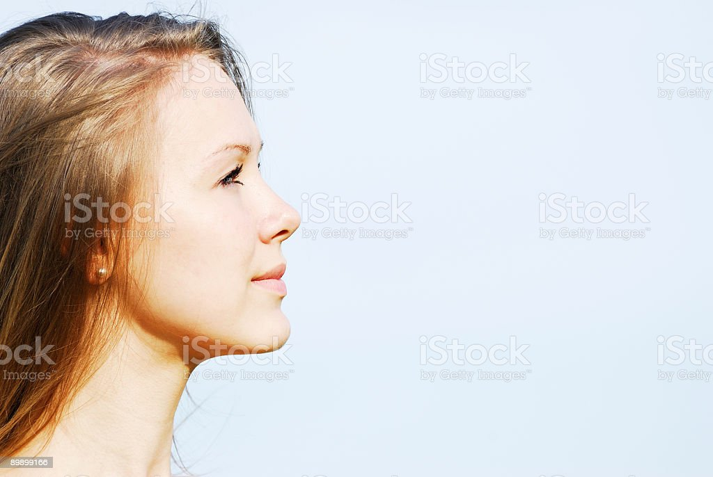 Profile of the face young woman royalty-free stock photo