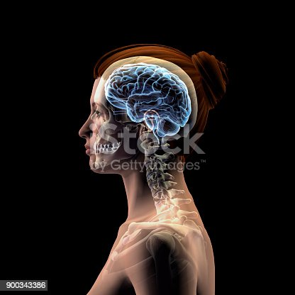 istock Profile of Woman's Head with Skull and Brain on Black Background 900343386