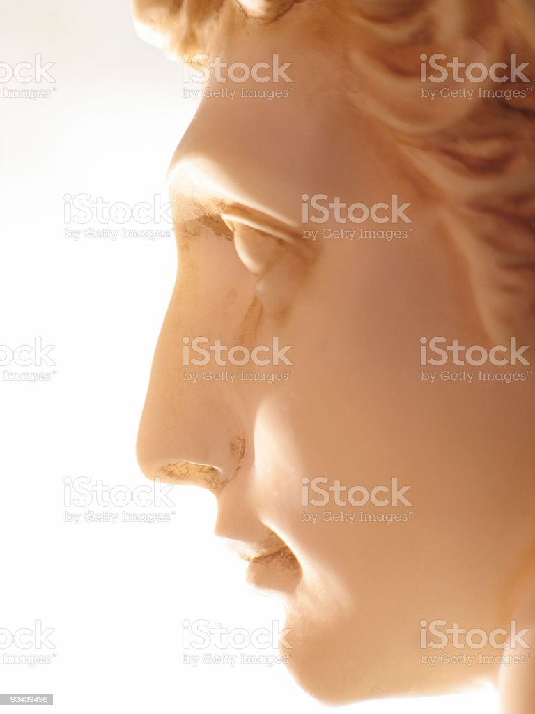 profile royalty-free stock photo
