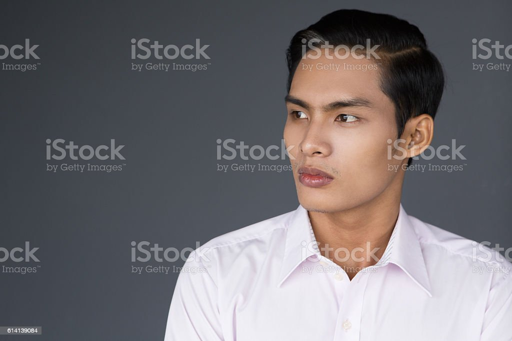 Profile Portrait of Young Asian Businessman stock photo