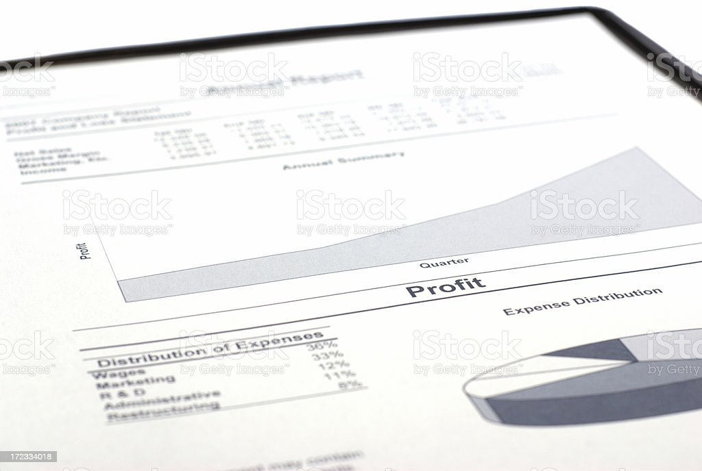 Profit on Annual Report royalty-free stock photo