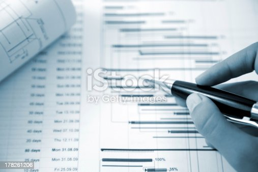 614338352 istock photo Project management 178261206
