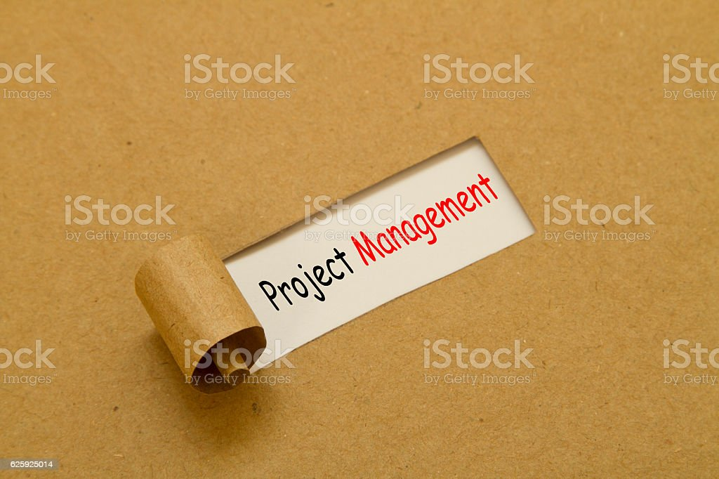 Project management written under torn paper stock photo