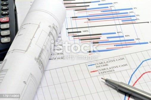 614338352 istock photo Project planning 179114955