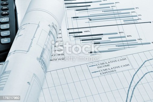 614338352 istock photo Project planning 179217960