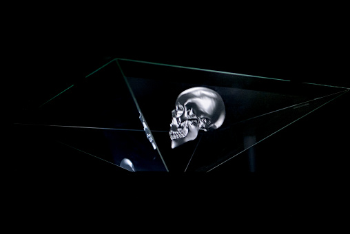 3D projection of the skull on the screen.