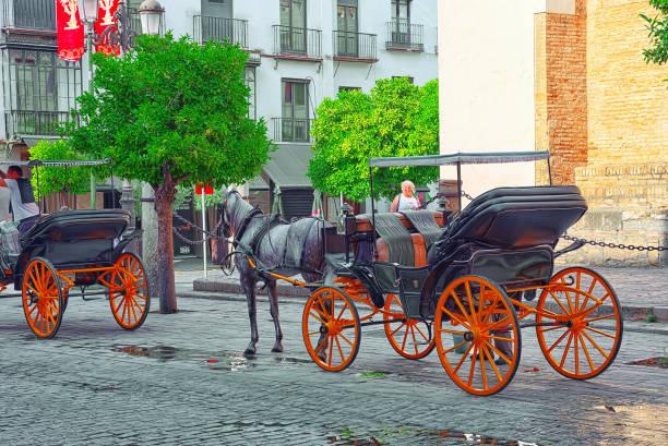 Promenade et un cheval en face de la vathedral de Sainte Marie de la voir, mieux connue comme la cathédrale de Séville. - Photo