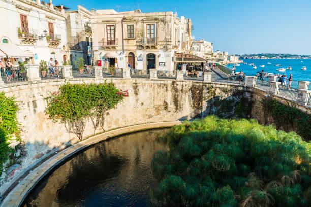 promenade und quelle der arethusa in siracusa, sizilien, italien - syrakus stock-fotos und bilder