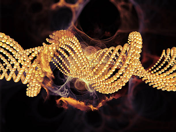 propagation of dna - elementary particle stock photos and pictures