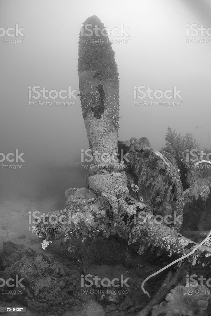 Propeller of a P38 fighter plane wreck royalty-free stock photo