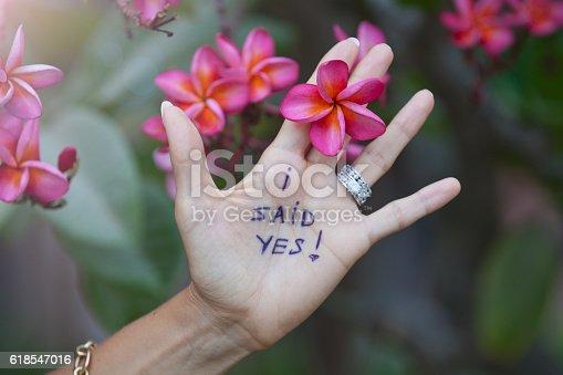 istock Proposal on resort. 618547016