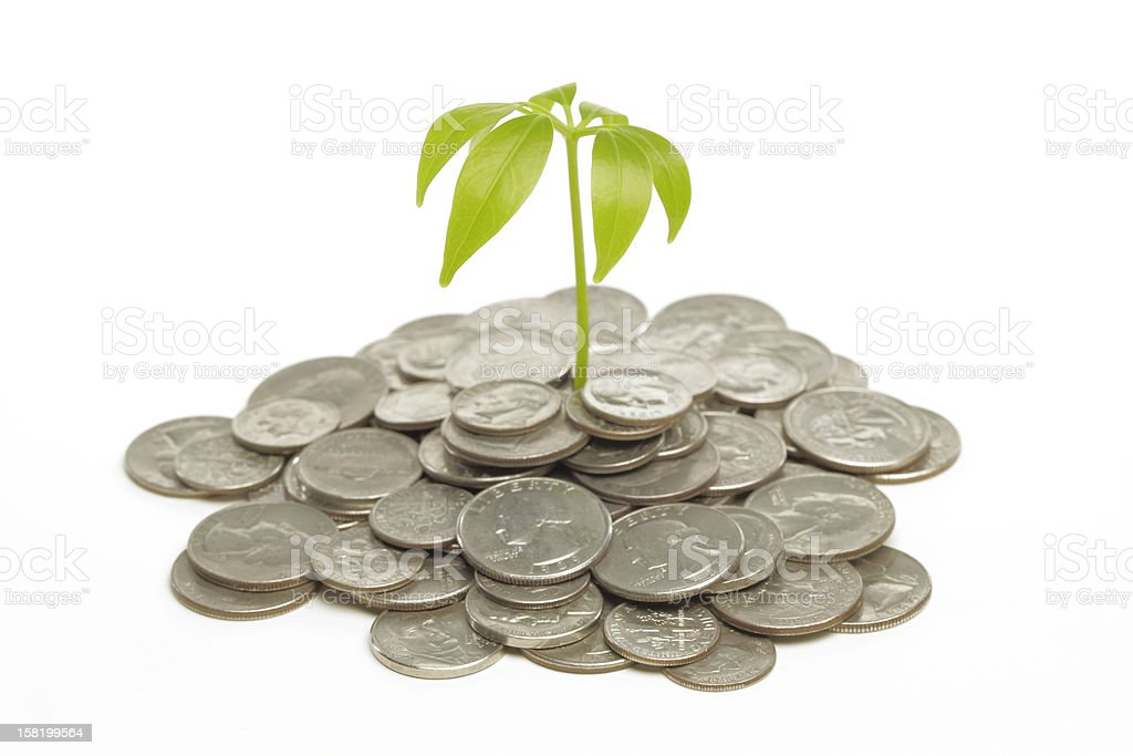 Prosperity Concepts of Money Growth. Plant Grows out of Silver Coins. Image Desaturated with Selective Focus. 401k Stock Photo