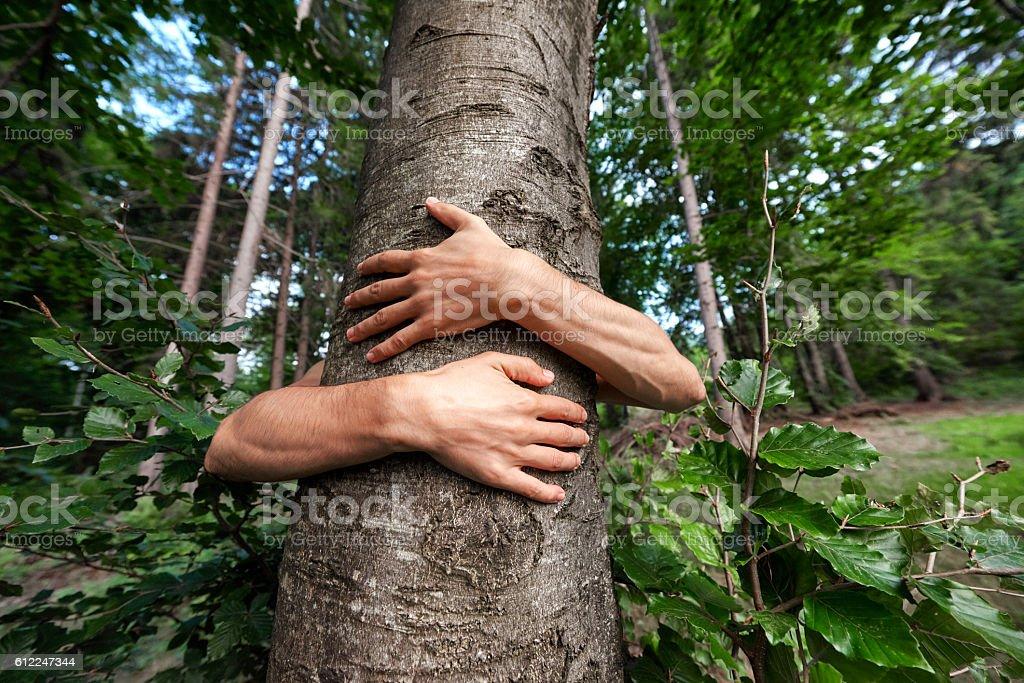 Schutz der Umwelt – Foto